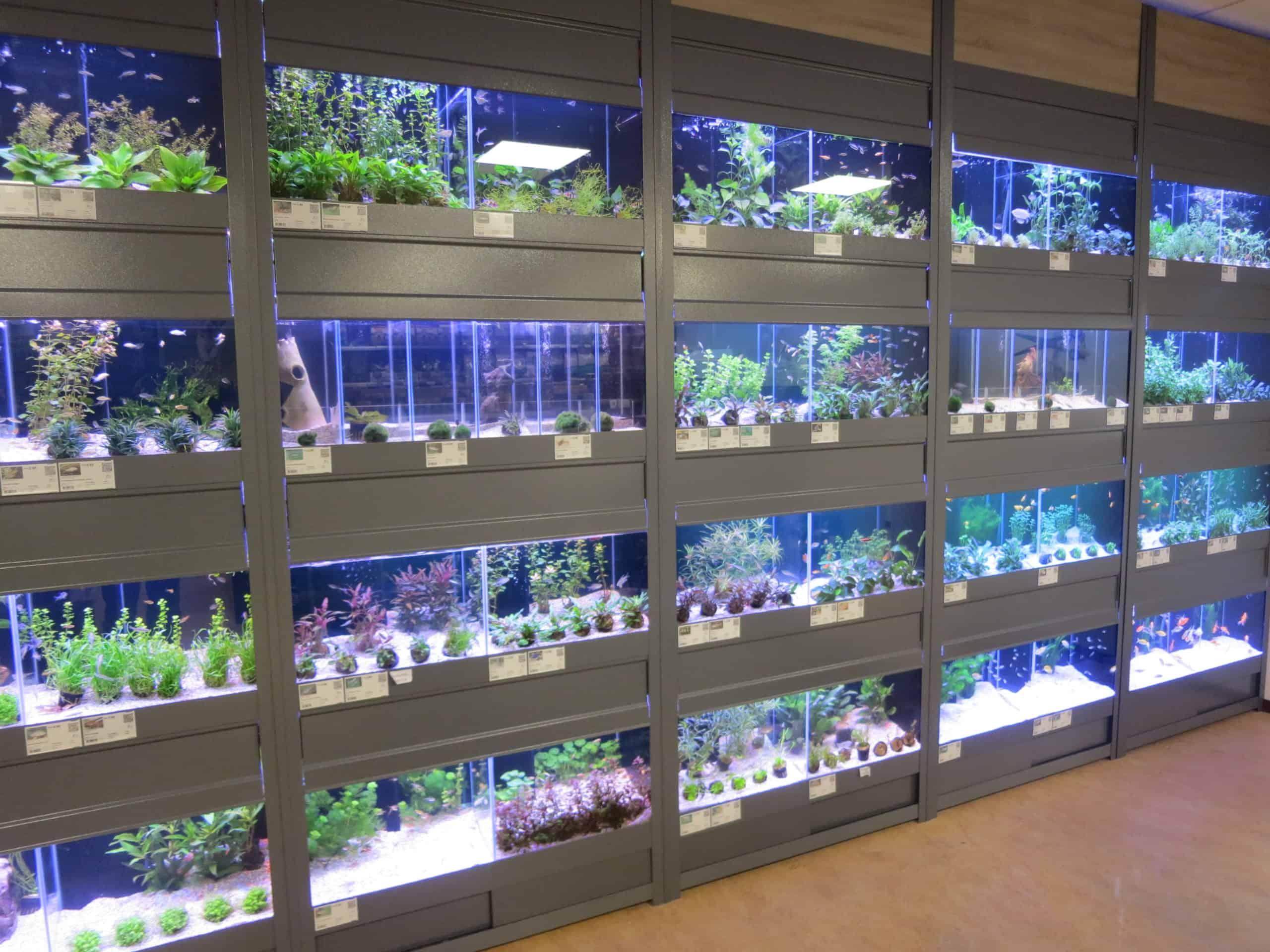 aquarium stelling A-serie met kleppen 3